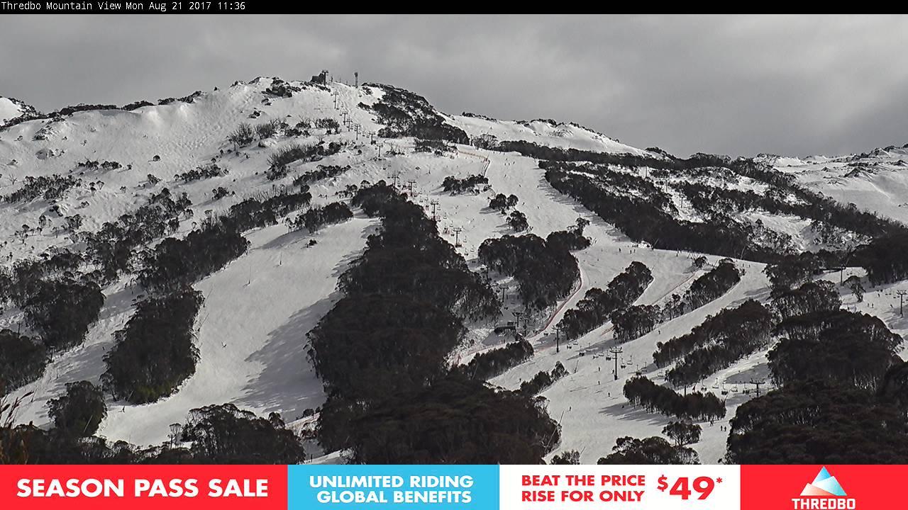 thredbo-alpine-way-1503279605.jpg