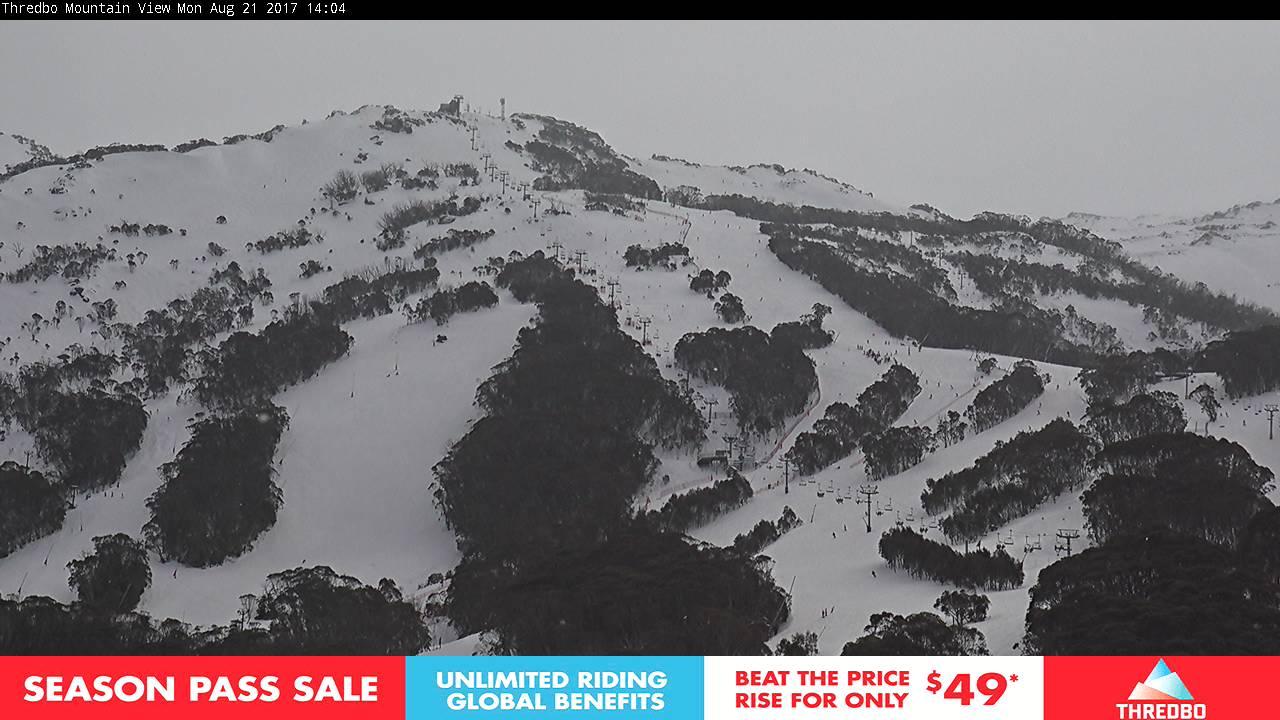 thredbo-alpine-way-1503288604.jpg