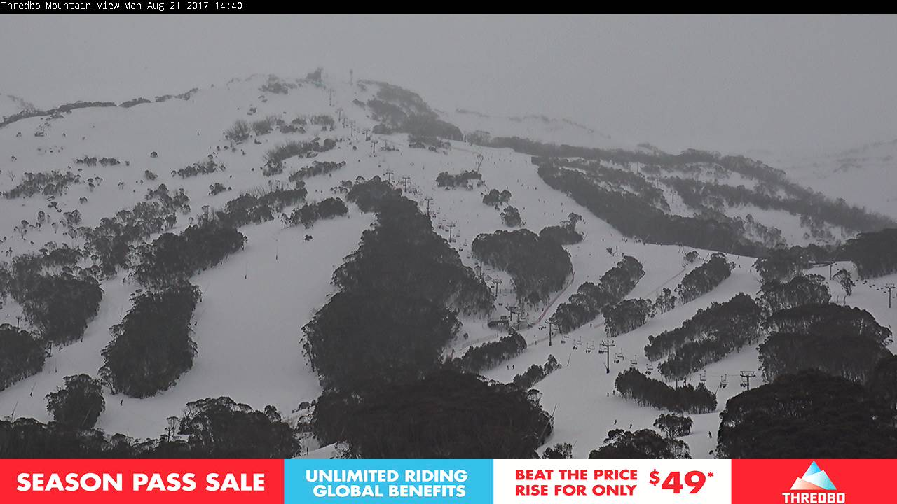 thredbo-alpine-way-1503290665.jpg